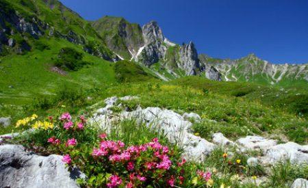 Kurzurlaub mit Kindern in Bayern