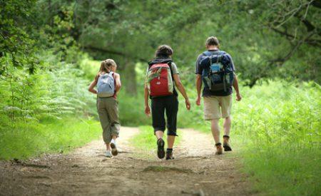 Mit den Kindern zur Wanderung