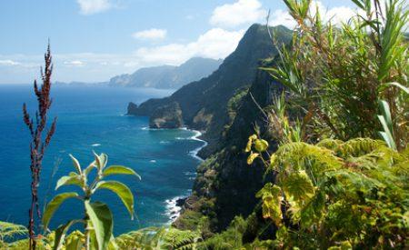 Mit Kindern nach Madeira reisen