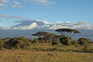 Kilimandscharo - Gipfelaufstieg durch die Nacht