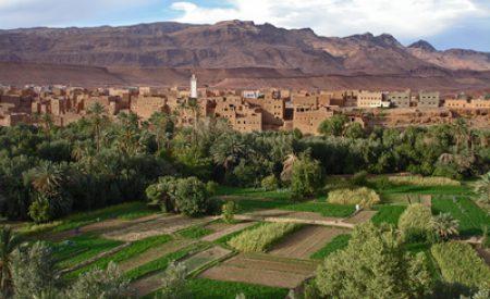 Die Perle des Südens: Marrakesch