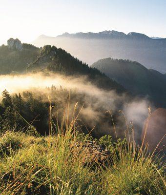 Meditatives Wandern in Bayern:<br>Auszeit für die Seele
