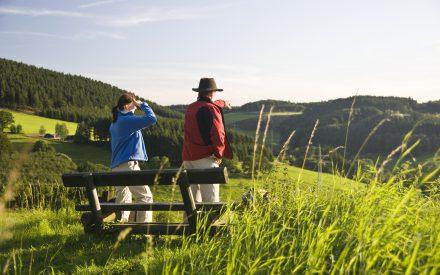 Top-Tipps fürs schöne Sauerland