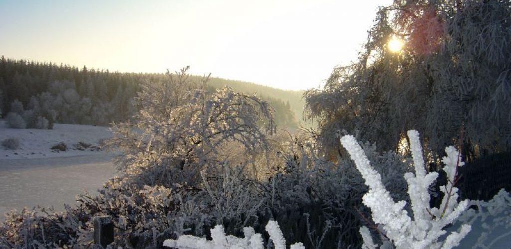 Winterspaß im Oberharz