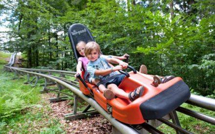 Nationalpark BayerischerWald: In Grafenau gibt es für Familien viel zu erleben