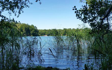 Land der 3000 Seen: So schön kann Urlaub in Brandenburg sein